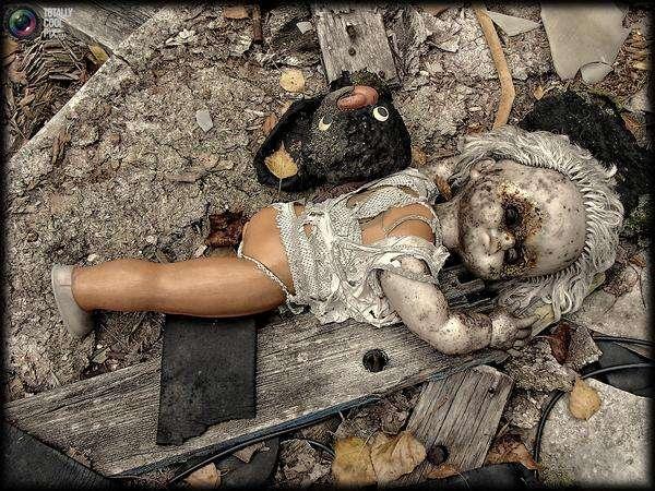 chernobyl52 - Chernobyl 25 años después