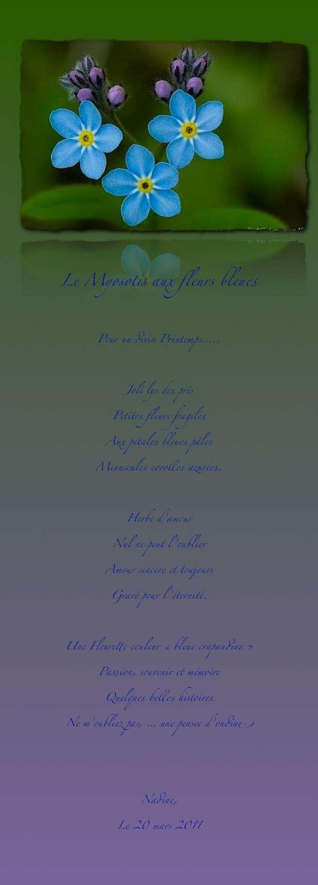 http://img828.imageshack.us/img828/74/lesmyosotisparnadine.jpg