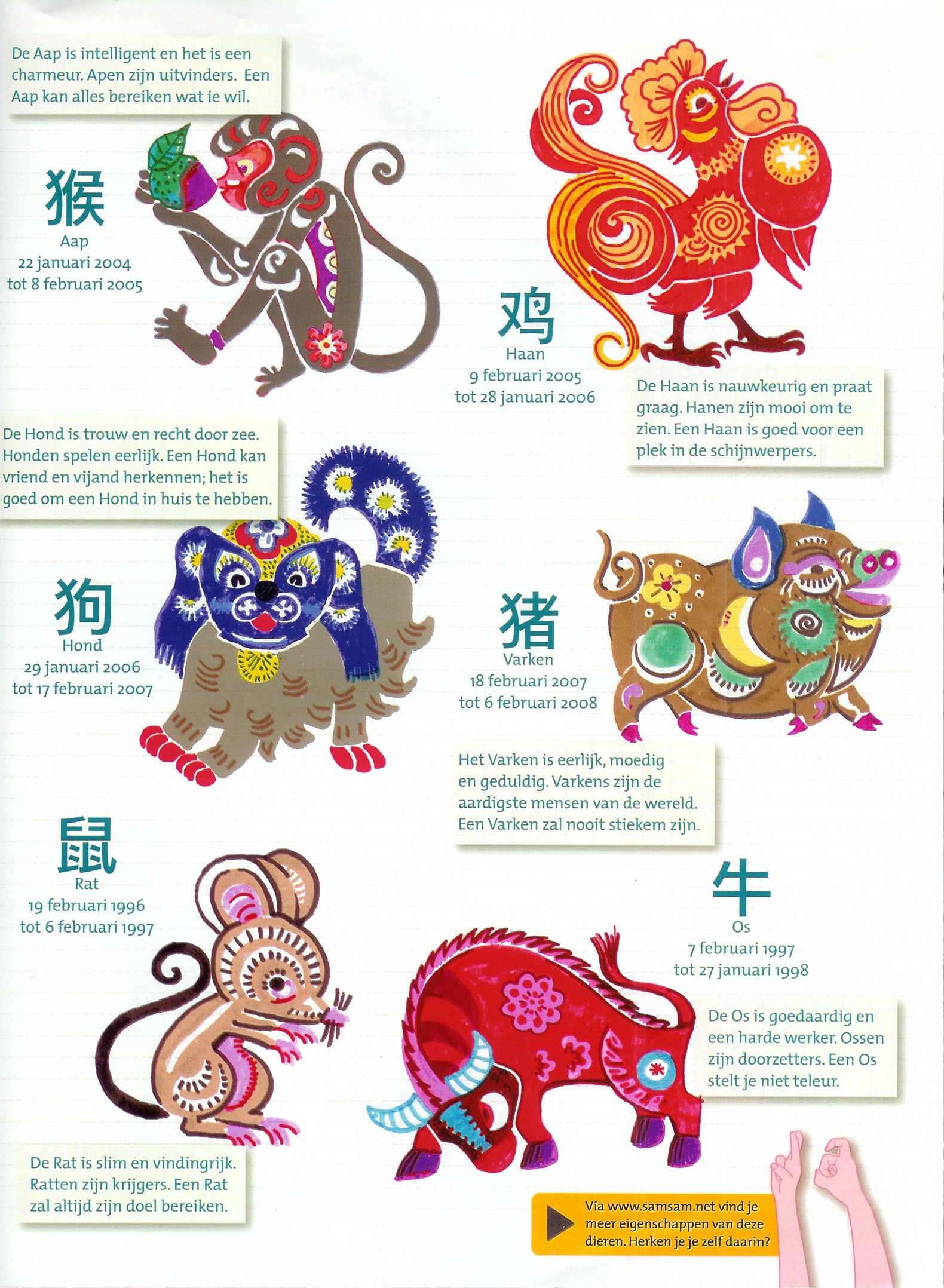 chinese draak wikikids